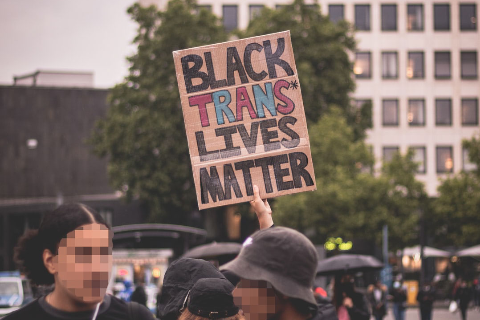 "Picture of protest sign that says ""Black Trans Lives Matter"""