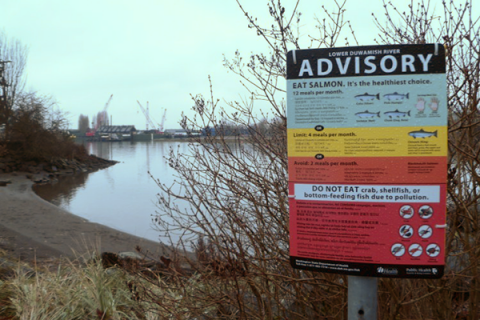 The lower Duwamish fishing advisory